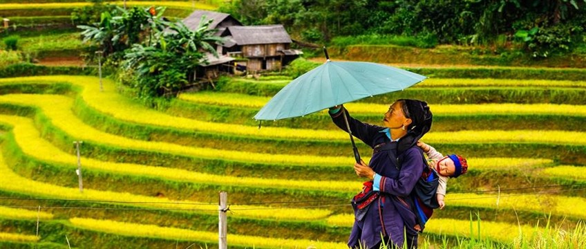 vietnam photography tour to see beautiful rice terraces