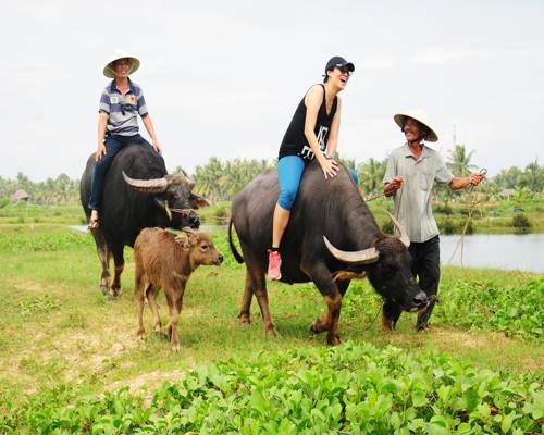 Vietnam rural tourism - the perfect choice for your next vacation