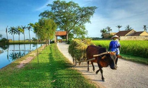 Top 4 pretty villages not to be missed during your Vietnam tour