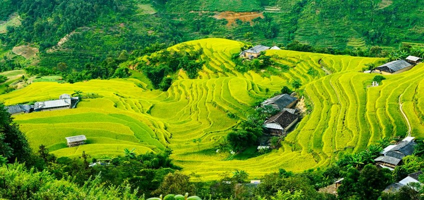 north vietnam tour packages