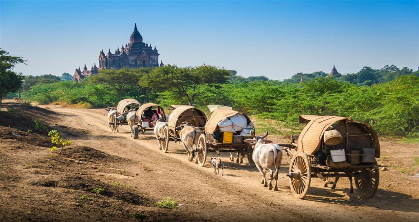 myanmar private tours