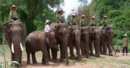 MAT08: Myanmar Elephant Riding - 5 days / 4 nights
