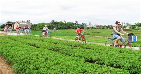 HA06: Cycling and boating Hoi An Tour