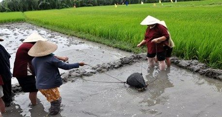 HA02: Hoi An Fishing and Farming Tour - Full Day