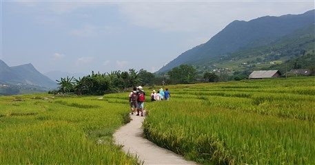 ST02: Trekking to Muong Hoa Valley - Full Day