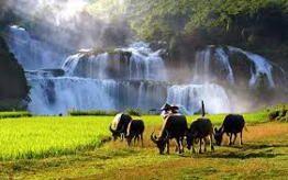 Ban Gioc Waterfalls