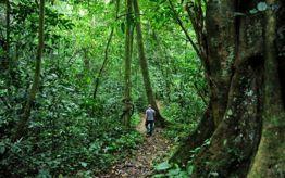 Visit Phu Quoc National Park