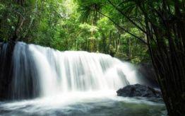 Tranh Stream Phu Quoc
