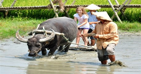 VF06: Vietnam Family Holiday of a lifetime - 19 days from HCM