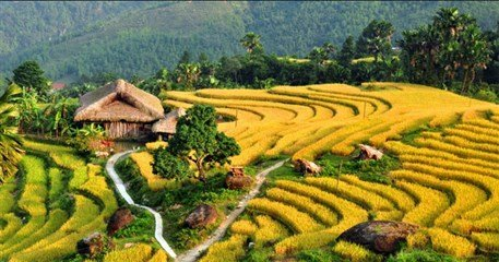 VT15: Vietnam Homestay Tour Experience - 16 days from Hanoi