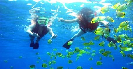 NH04: Nha Trang Snorkeling - One Day