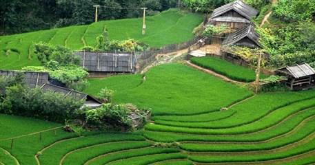 VC10: Fantastic Vietnam and Cambodia Holiday - 21 days from Hanoi
