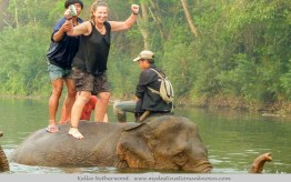 Visiting Elephants and Other Wildlife