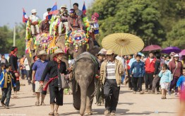 The Elephant Festival and Trade Fairs