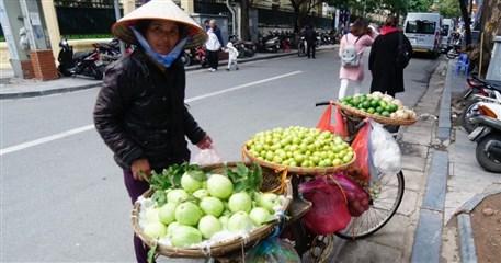 VPT05: Life in Vietnam - 18days/17nights